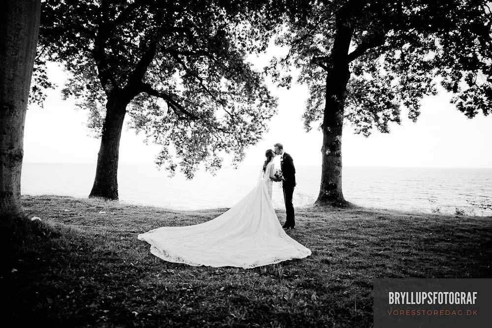 Wedding Planning Ideas and Guidelines