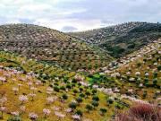 locais de visita obrigatória em Trás-os-Montes