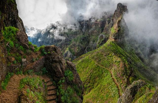 Madeira - Olga Land