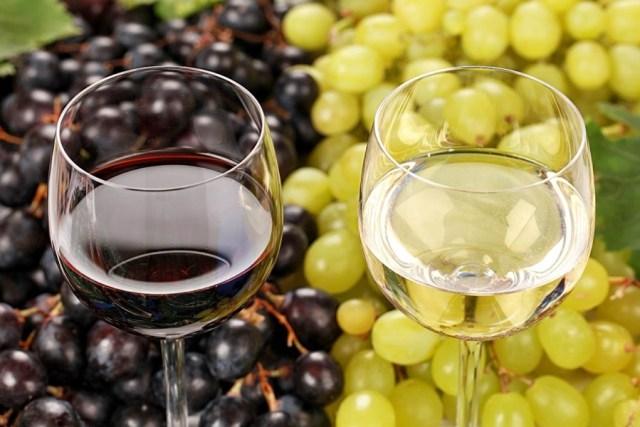 vinho66 (1)