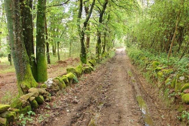 melhores percursos pedestres de Portugal