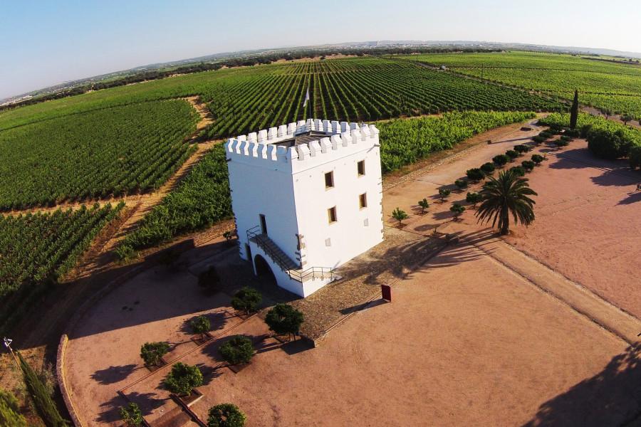 Torre do Esporão
