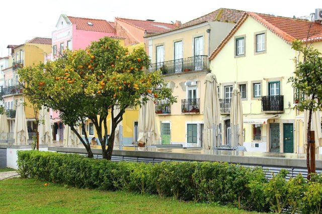 Rua Vieira Portuense