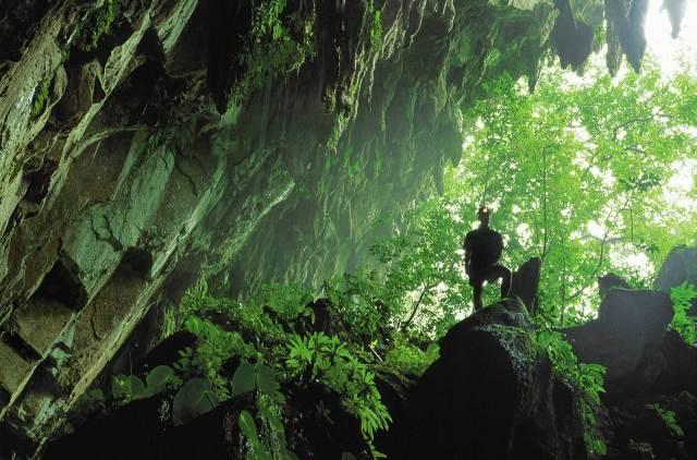 Mulu Caves, Bornéu, Malásia