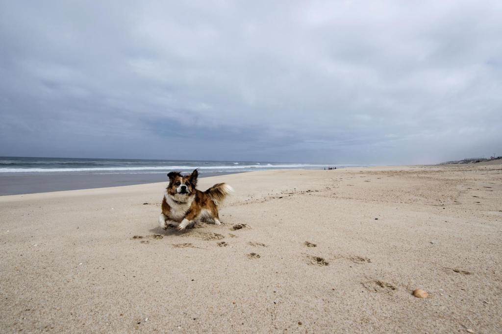 Praia da Ramalha Sul