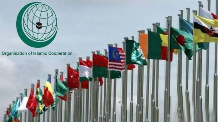 Palestinian FM announced decision on medical and financial aid by turkey in extra ordinary meeting of OIC