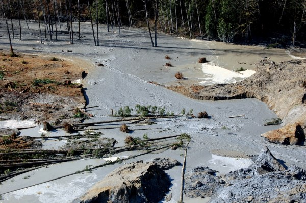 Oso Wa - Scientist Warned In 1999 Of Potential Deadly