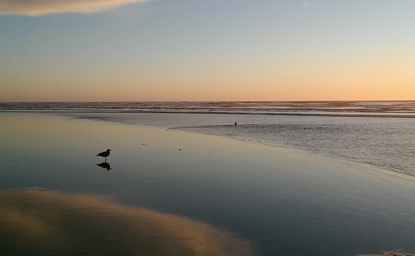 a very beachy beach