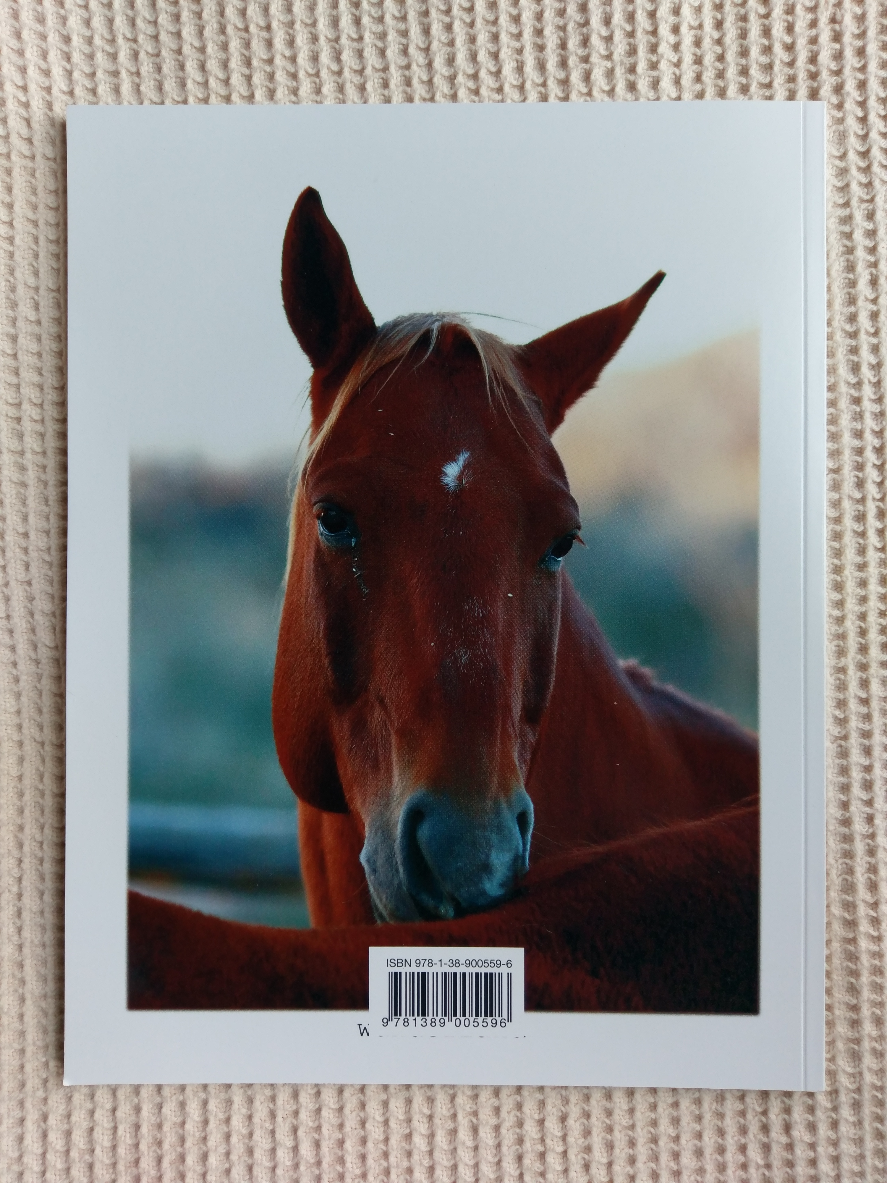 Back cover of Equine Portraiture
