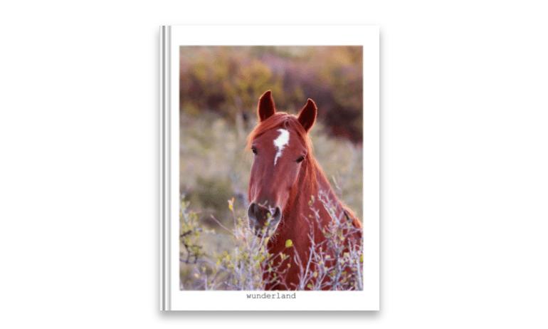Wunderland – <em>Equine Portraiture</em>