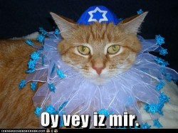 Oy vey is mir