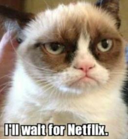 I'll wait for netflix