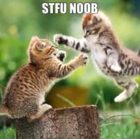STFU Noob