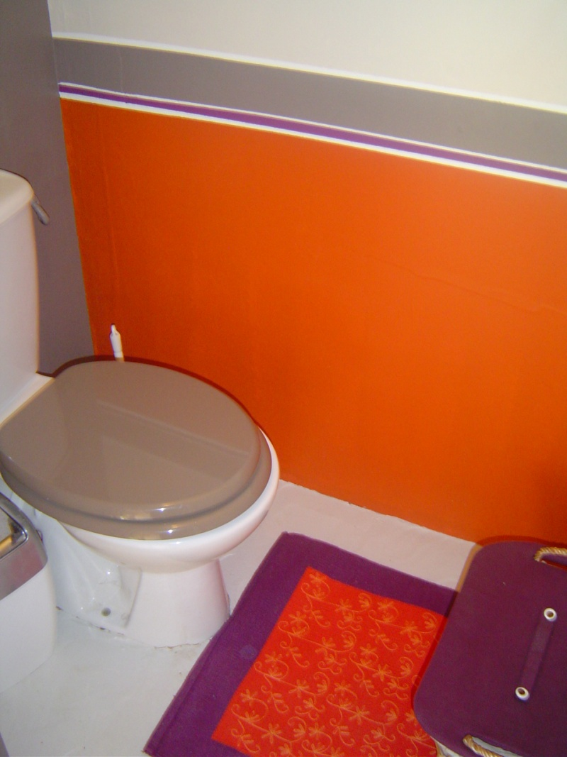 Dco Wc Orange Exemples Damnagements