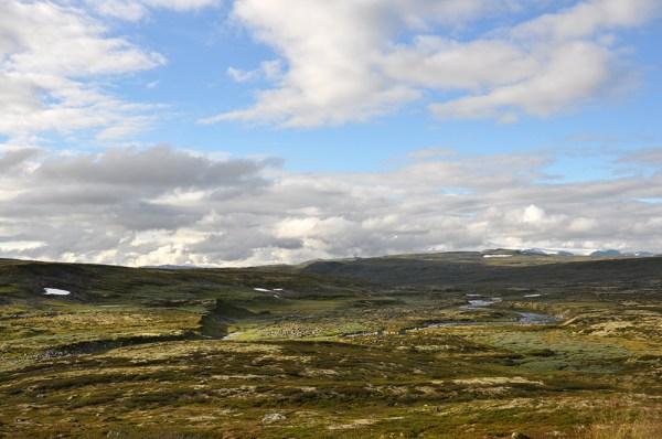 Plateau-de-Hardangervidda