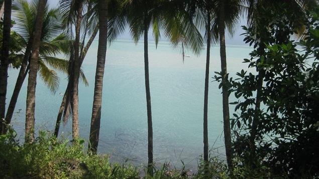 Guyane-7