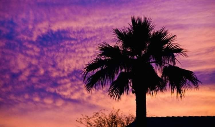 14-wd0809Phoenix-Arizona-2