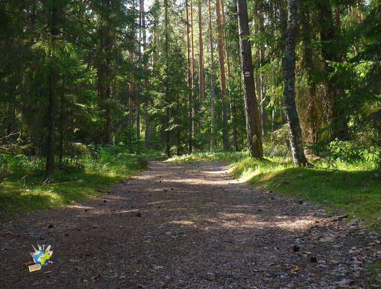 Randonnée en Estonie