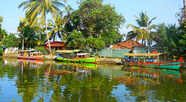 backwaters 3
