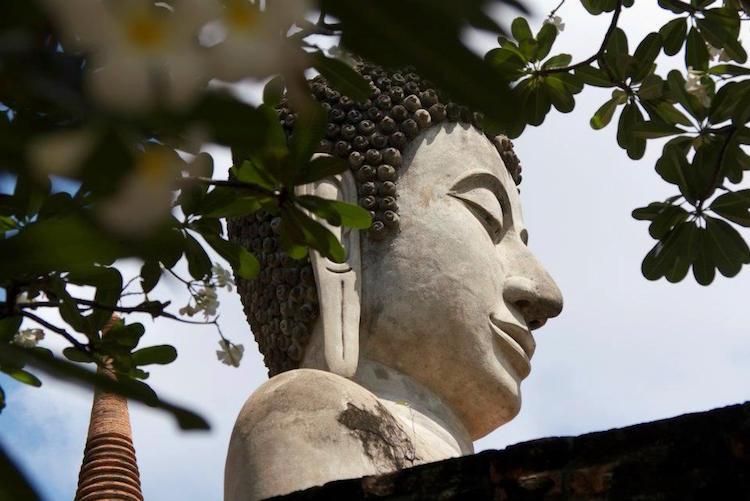 habiter thailande