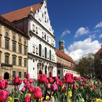 As tulipas enfeitam a cidade no início da Primavera