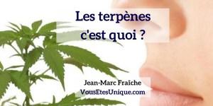 Les-Terpenes-Jean-Marc-Fraiche-VousEtesUnique