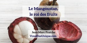 Mangoustan-BODY-HB-Naturals-Jean-Marc-Fraiche-VousEtesUnique