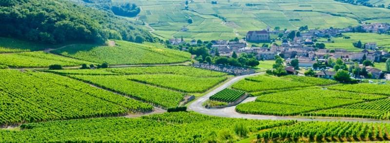 Travail-a-Domicile-Bourgogne-Jean-Marc-Fraiche