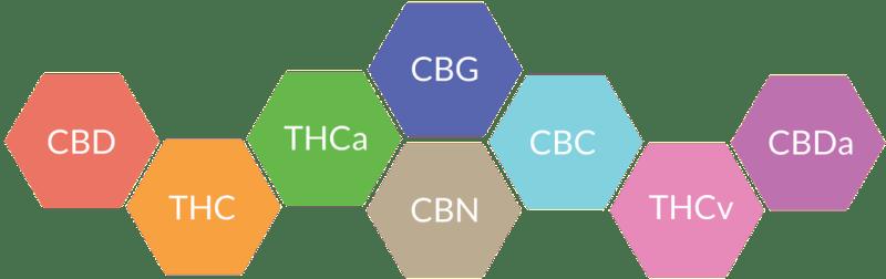 oil-CBD-HempHerbals-Cannabidiol-Produits-Jean-Marc-Fraiche-VousEtesUnique.com