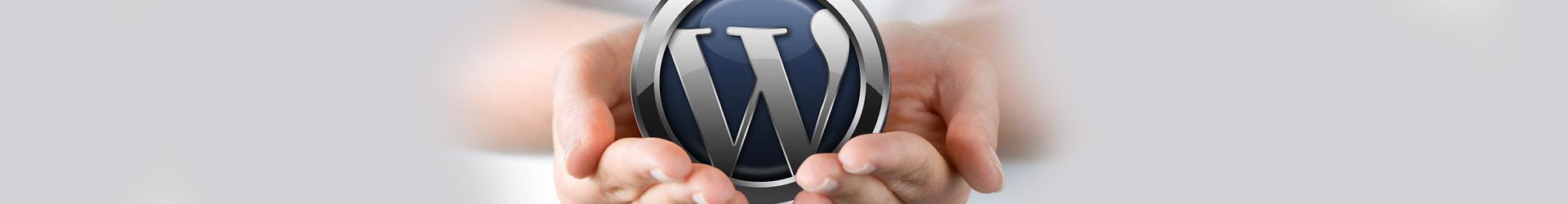 expertos en diseño web en wordpress