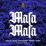 DMW Mafa Mafa ft Davido Dremo Peruzzi The Flowolf