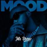 Mr Drew Mood