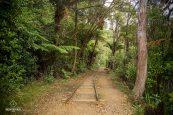 Mine d'or de Karangahake - Nouvelle-Zélande