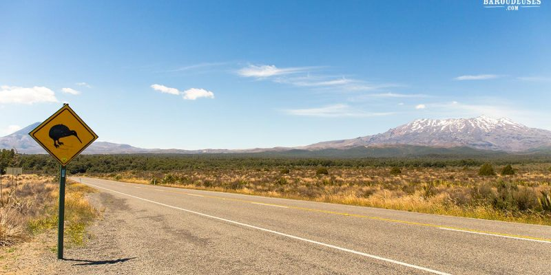 Sur la route - Tongariro National Pak - Kiwi road sign