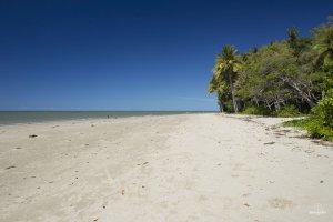 Plage au nord de Cairns