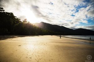 plage - Cape Tribulation
