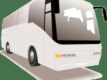 Faire du tourisme en autobus : les avantages