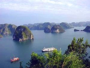 Les Vietnamiens en France votent pour la baie de Ha Long