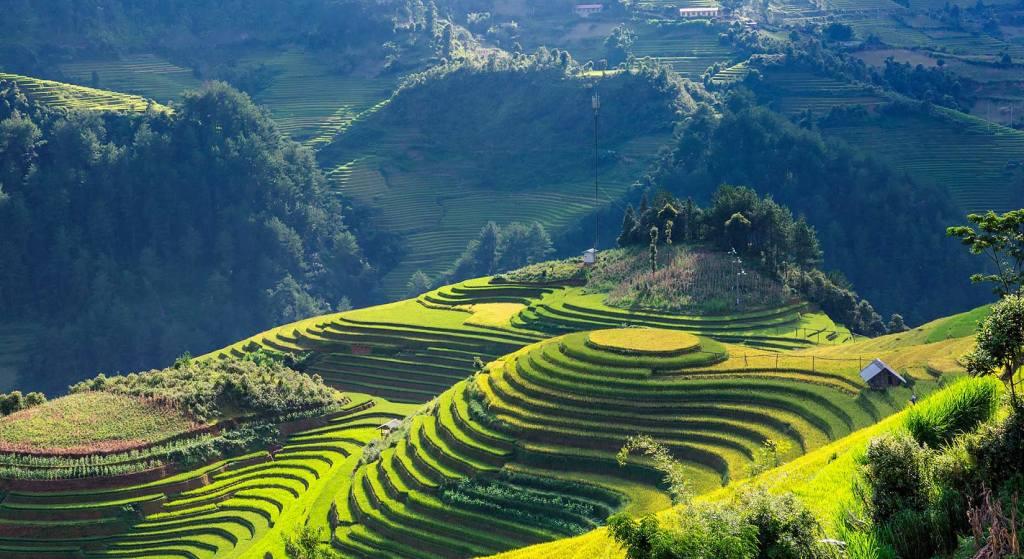 Mu Cang Chai, rizières, Vietnam