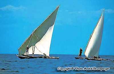 Boutres sur l'océan indien Voyage Zanzibar