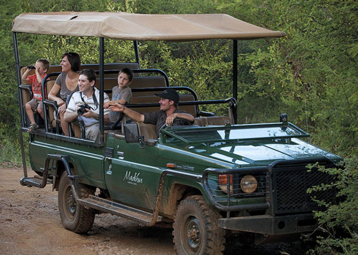 Madikwe Safari Lodge -south-africa-accommodations-madikwe-game-reserve-journey-in-style