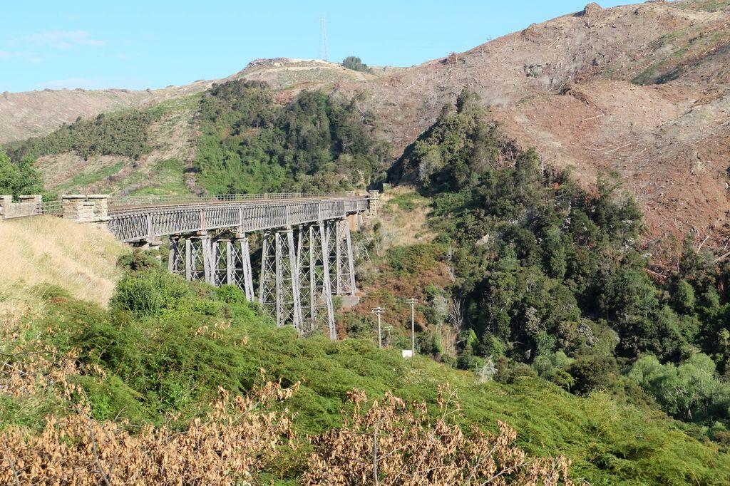 roadtrip-nouvelle-zelande-dunedin-otago-blog-voyage-14