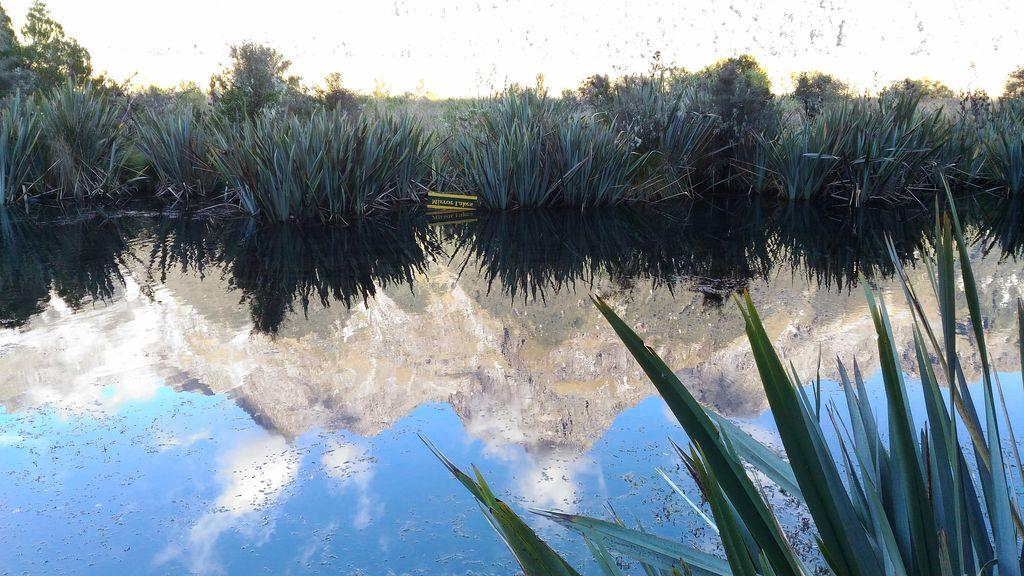 roadtrip-nouvelle-zelande-milford-sound-croisiere--blog-voyage-23
