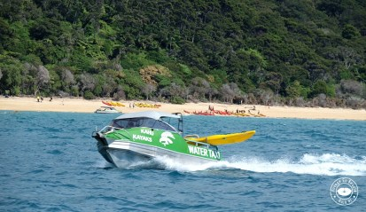 roadtrip-nouvelle-zelande-abel-tasman-malborough-blog-voyage