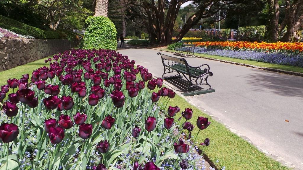 roadtrip-nouvelle-zelande-wellington-blog-voyage-31