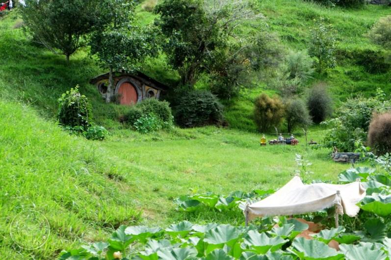roadtrip-nouvelle-zelande-hobbiton-blog-voyage-19