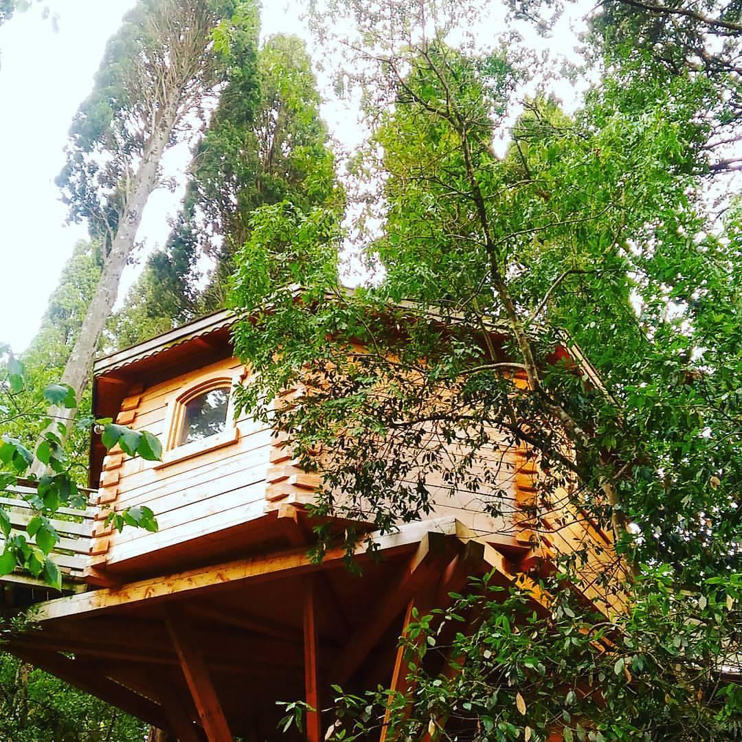 insolite j 39 ai dormi dans une cabane dans les bois carcassonne voyage en beaut. Black Bedroom Furniture Sets. Home Design Ideas