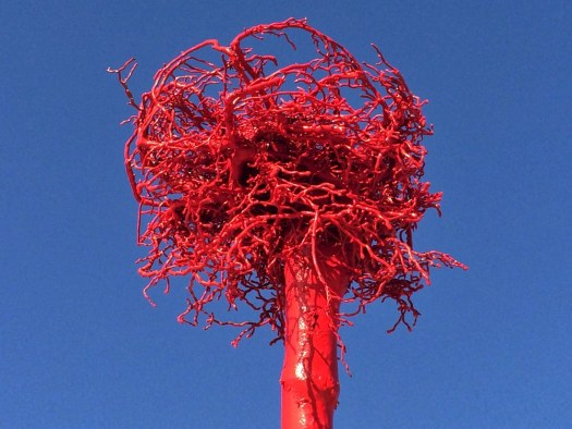 sculpture-by-the-sea-2014-evidence-based-research
