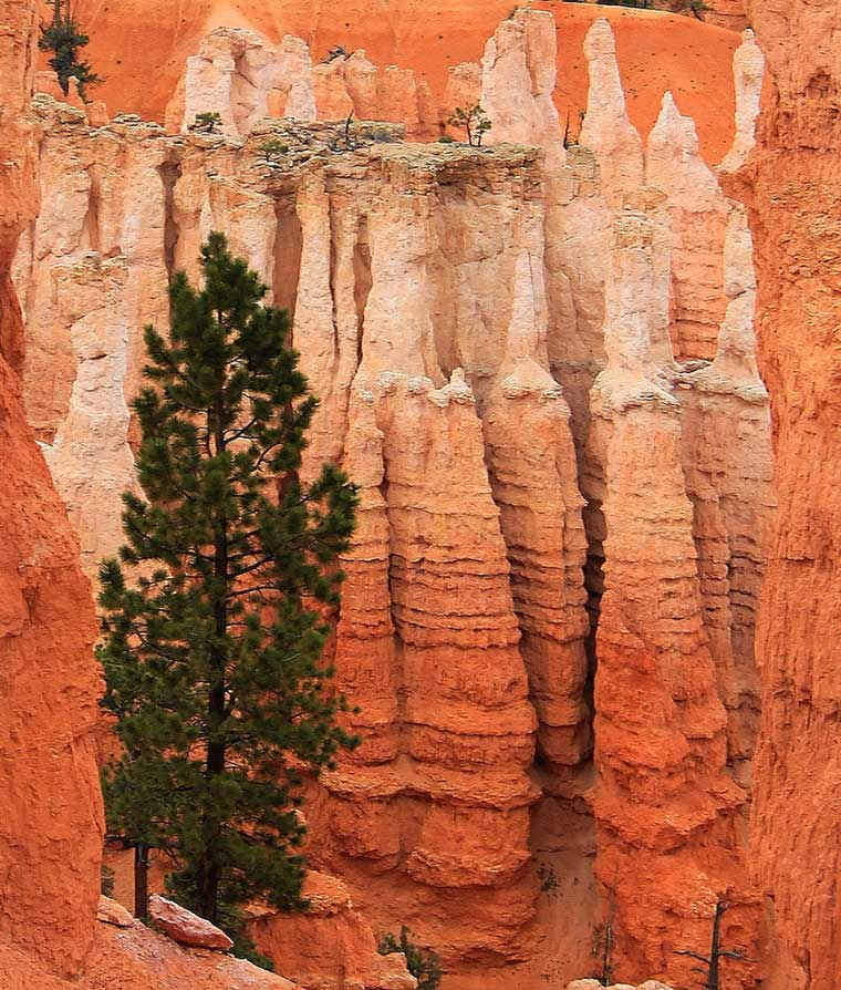 Rock Formations, Bryce Canyon National Park, Utah - Taken by Diann Corbett, 05/2013.