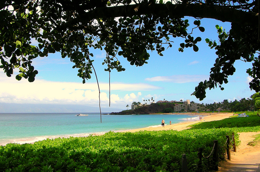 Kaanapali Beach, Maui, 02/2015, taken by Diann Corbett